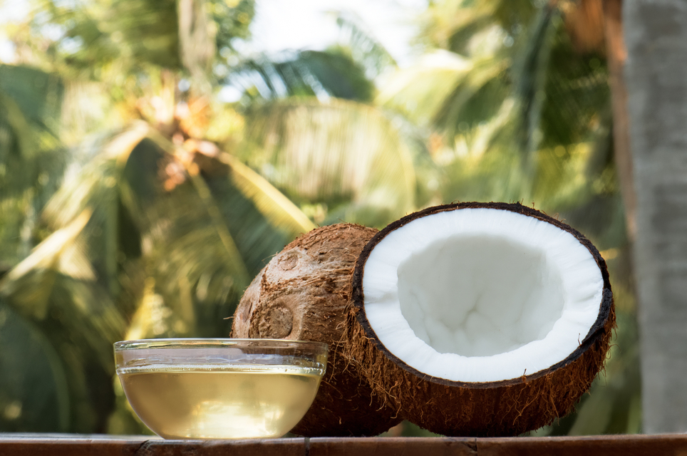 coconut and coconut oil with coconut tree background