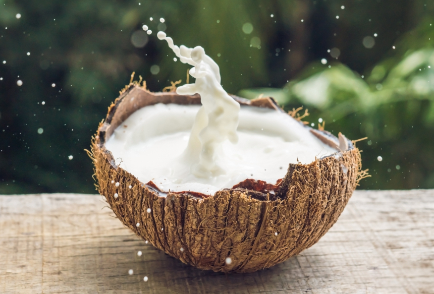 Coconut fruit and milk splash inside it on a background of a palm tree.