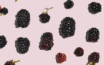 Aveeno skin care ingredients – Blackberry