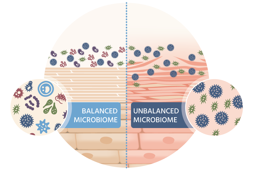 microbiome-illustration