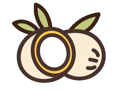 Coco-Glucoside